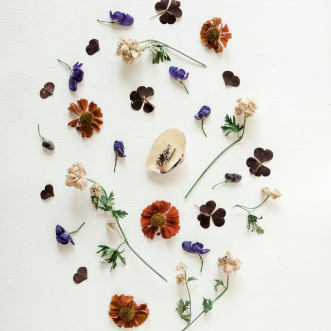 green-grip-seeded-paper-flowers