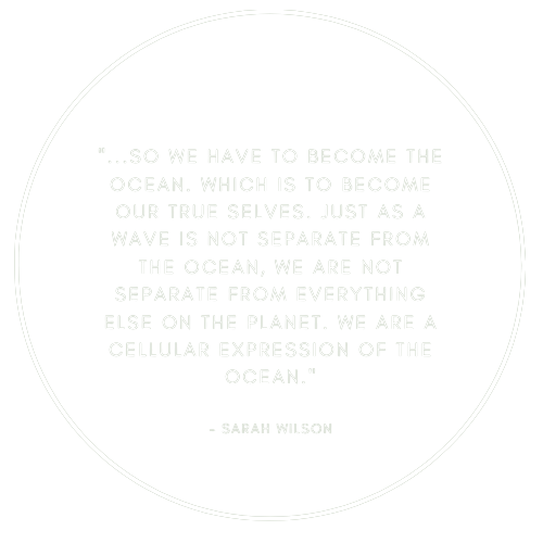 Organic and sustainable Eco Surf Wax locally made for ocean lovers